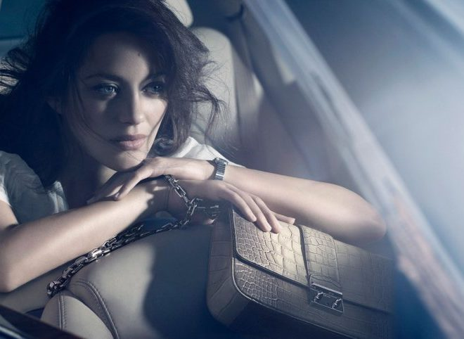 Miss Lady Dior Handbags 2011