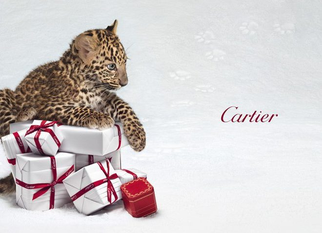 cartier panther ad campaign