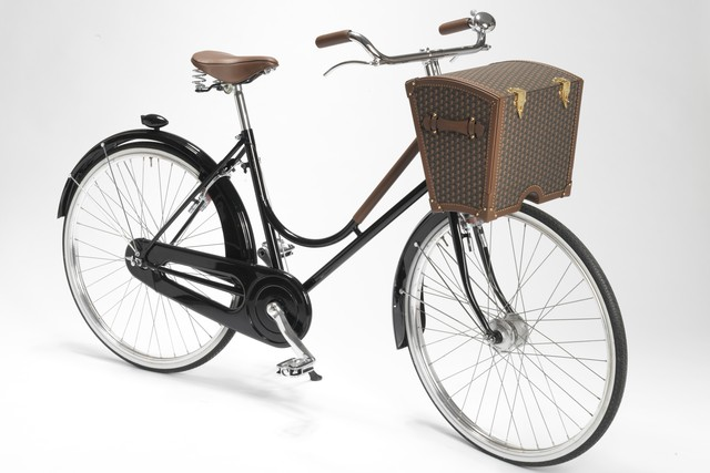 Moynat Bicycle Trunk