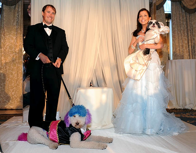 most expensive pet wedding
