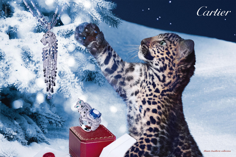Winter tale Cartier