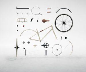 Flaneur Hermes bike
