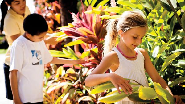 Four Seasons Maui at Wailea charity