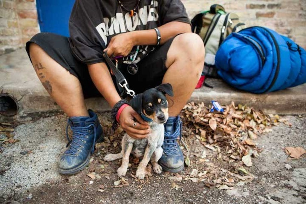 Photography Series Of Homeless People With Their Pets 12