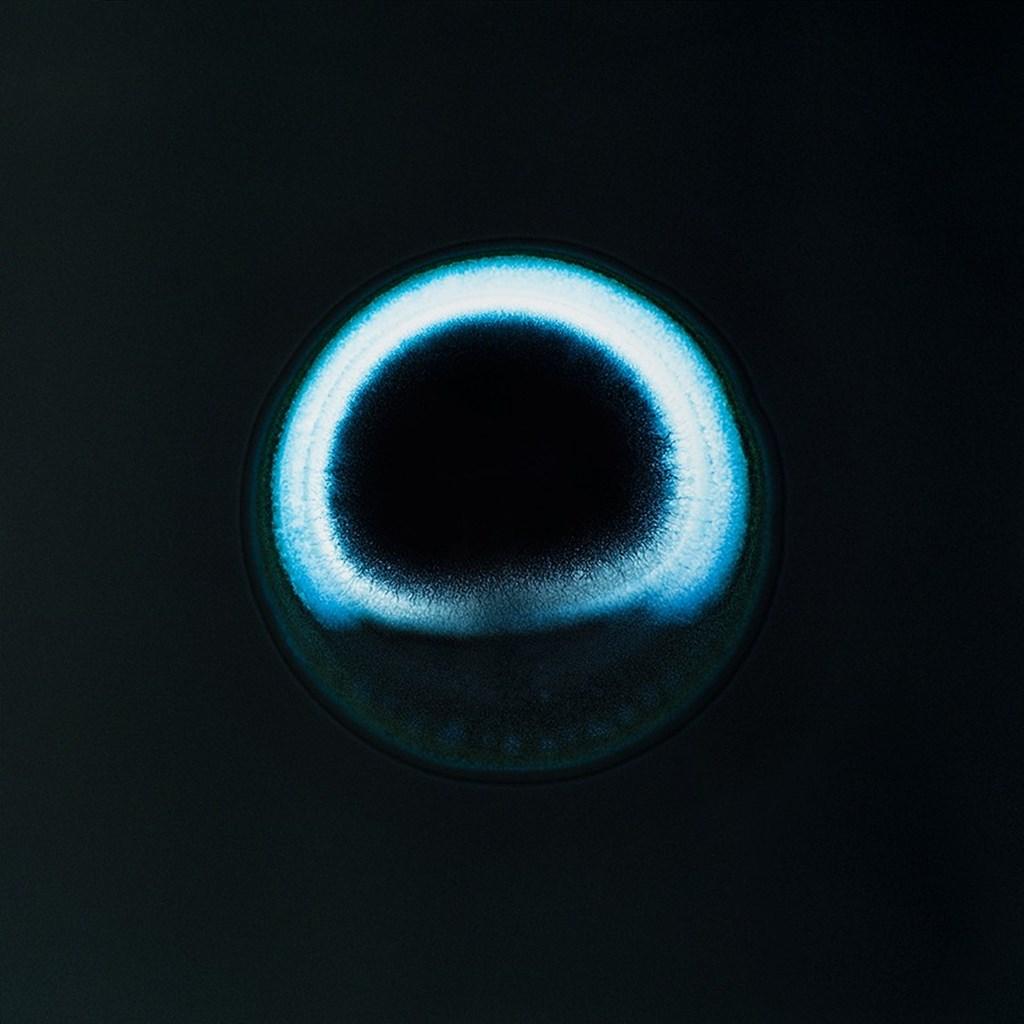S.schoenfeld Aycf Valium.planets