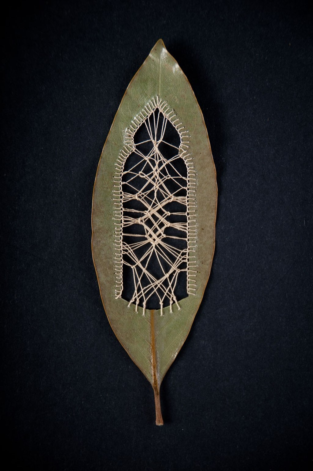 Leaf Art By Hillary Fayle 13