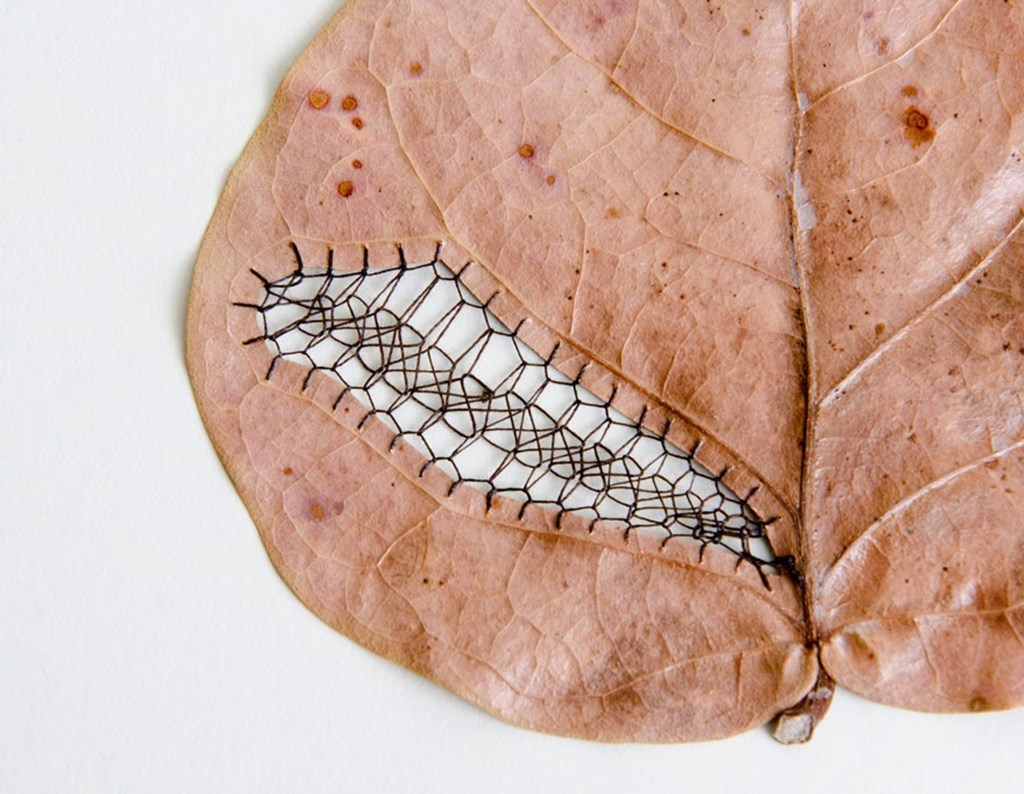 Leaf Art By Hillary Fayle 4