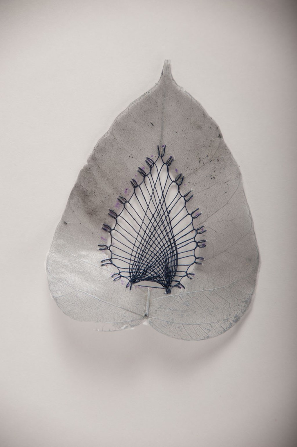Leaf Art By Hillary Fayle 8