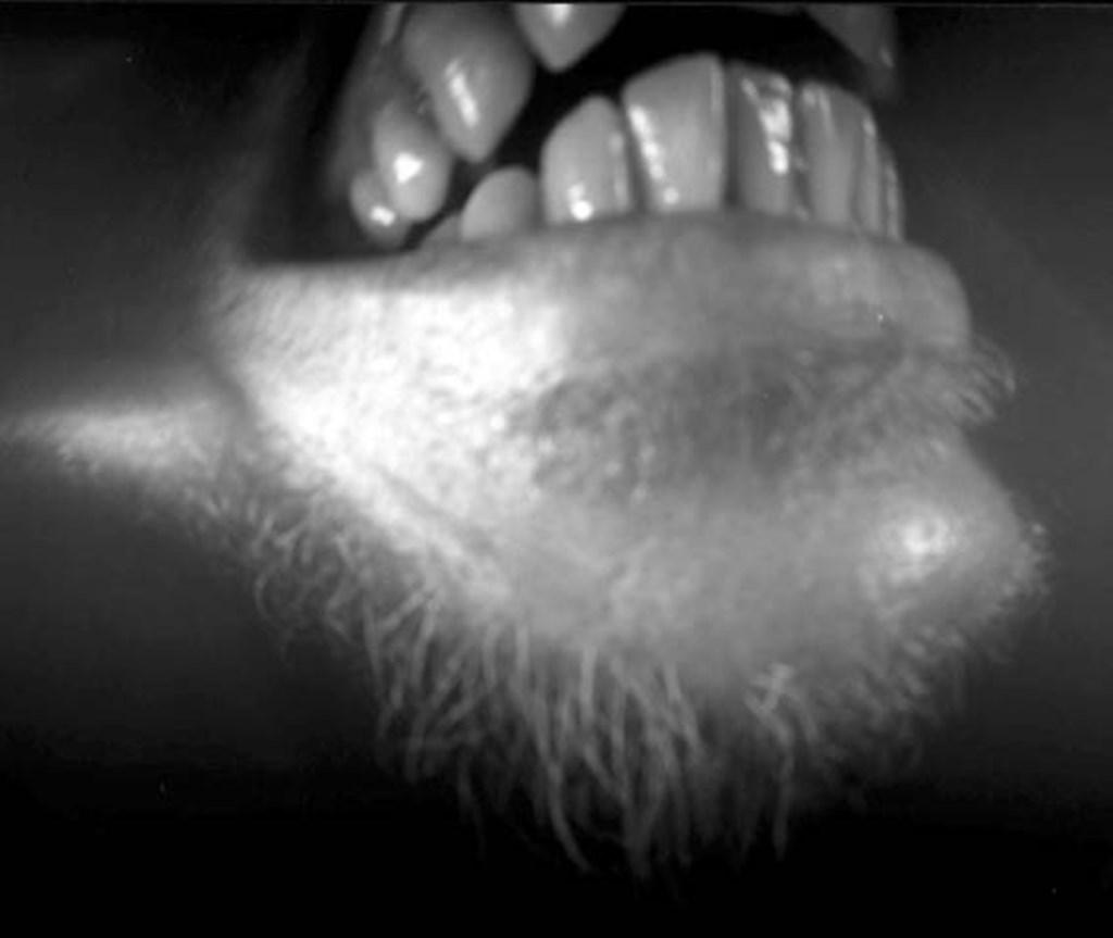 Mouthpiece 2