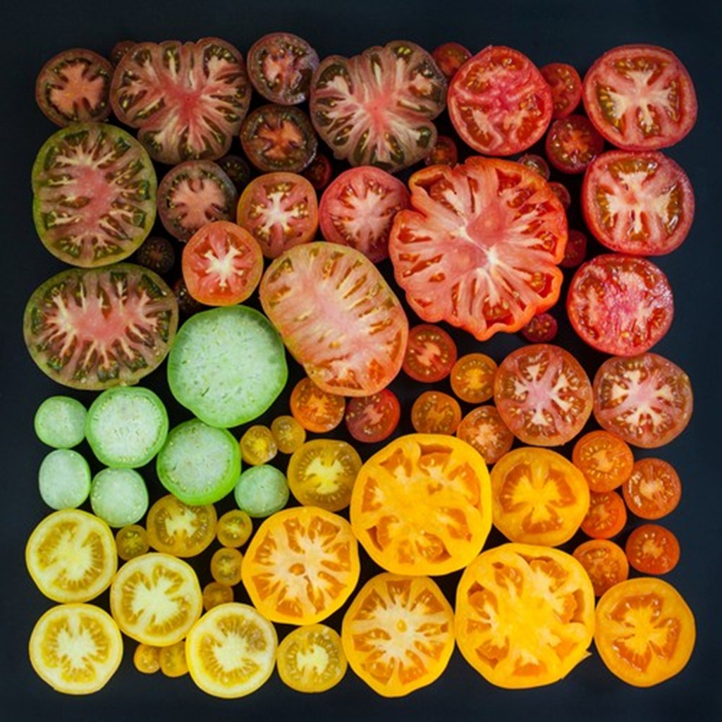 Photographs Of Color Coded Food And Plants By Emily Blincoe 3