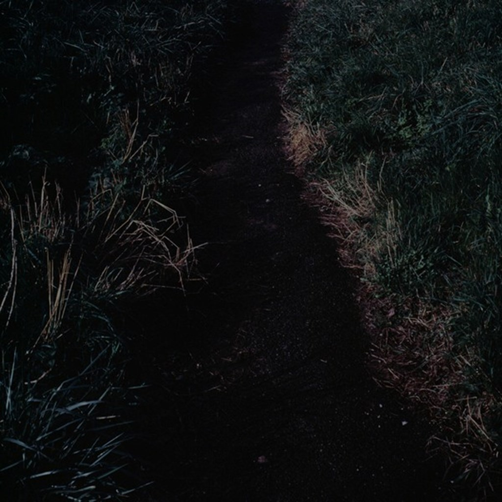In The Half Light 7