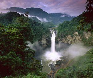 Ecuador Yasuni national park