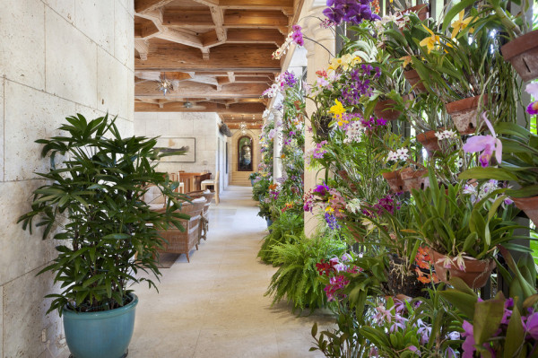 Orchid Alley loggia