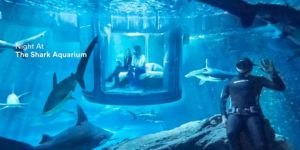 Airbnb Offers Shark Tank Stay