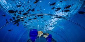 World's Biggest Underwater Restaurant Seats 16