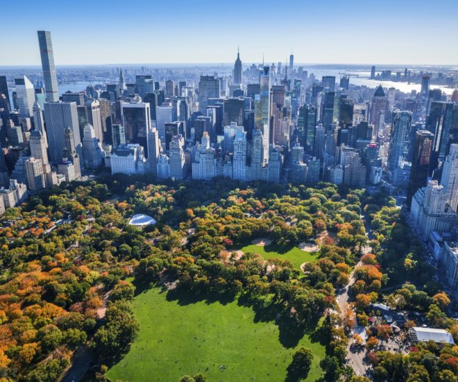New York iStock generic with Central Park