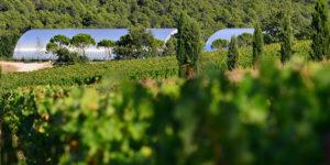 Château La Coste: Contemporary Wine