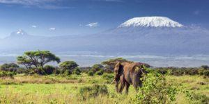 Africa, Italy Most Popular Winter Destinations