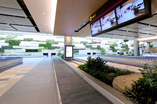 You'll bask in natural light against greenery on the walls of new Changi Airport Terminal 4 Arrival Hall.