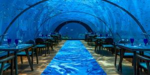 Maldives' All-Glass Undersea Restaurant And Yoga Venue